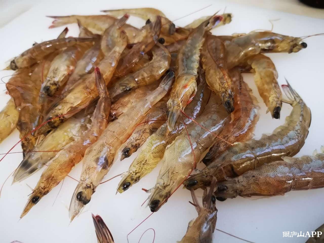 蒜蓉开背虾——喜欢吗?