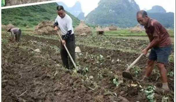 在廬山農村長大的70、80后,你們一定做過這些事!