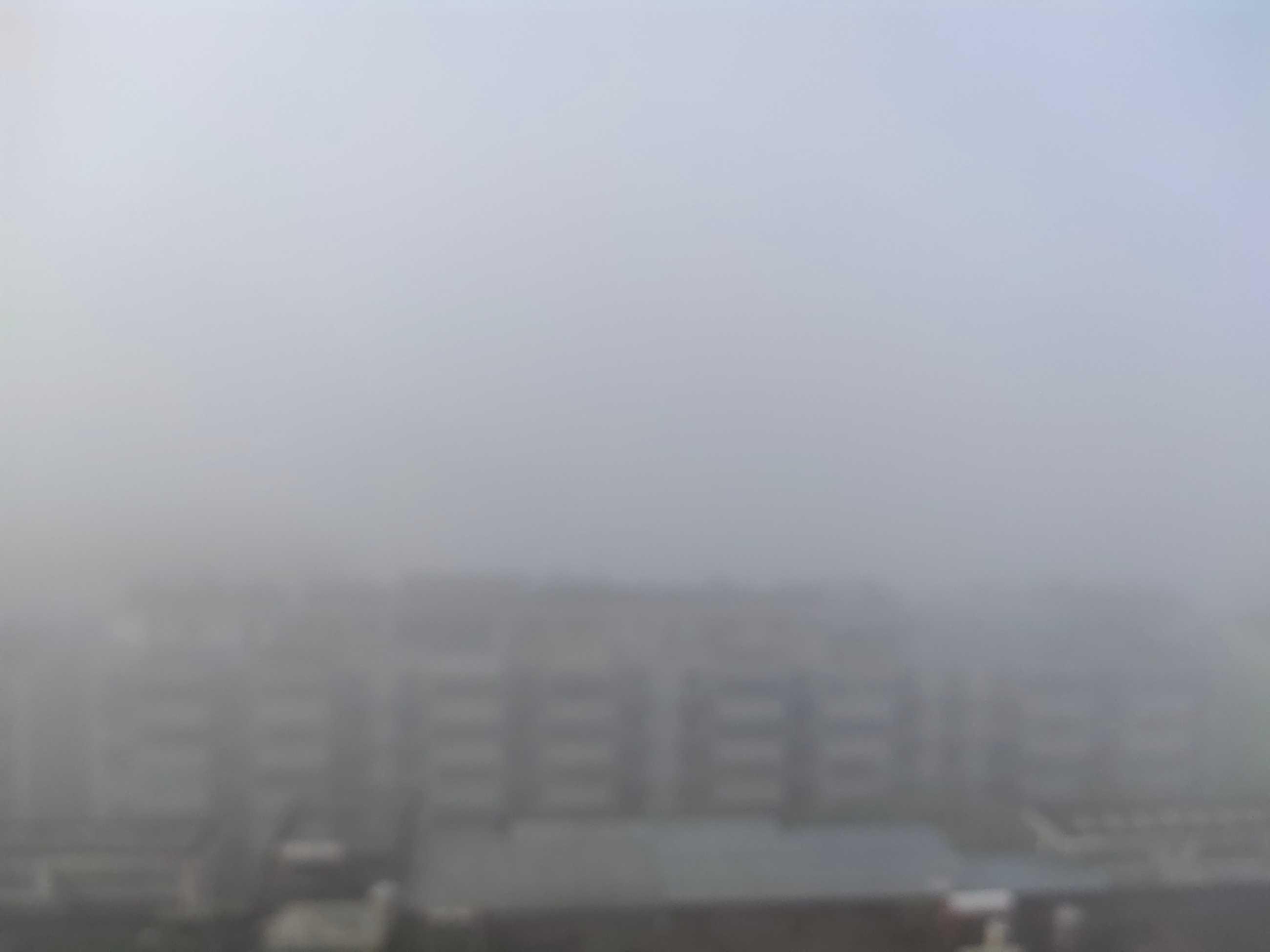 雾天+雨天一起来了,在庐山市这些你一定要注意!