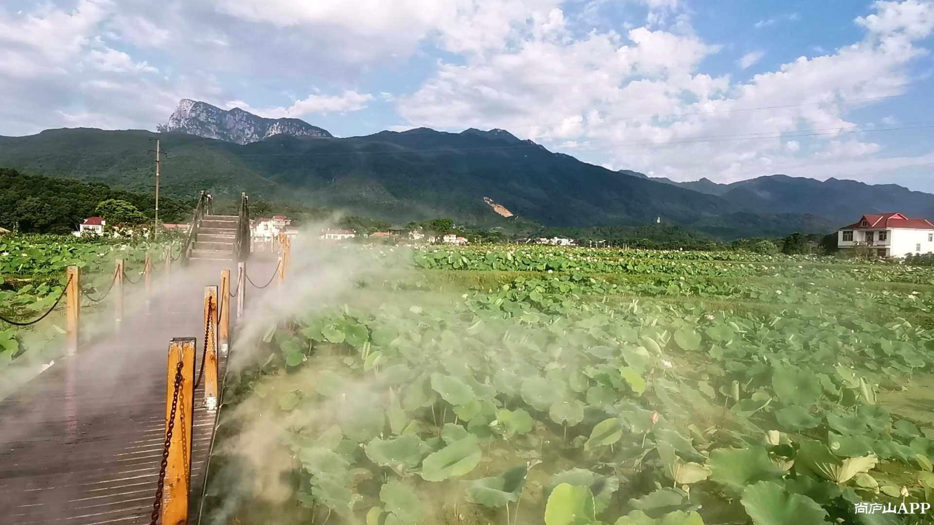 Videoframe_20210624_071702_com.huawei.himovie.jpg
