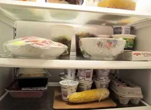 你们的妈妈会把剩菜冻在冰箱里吗?